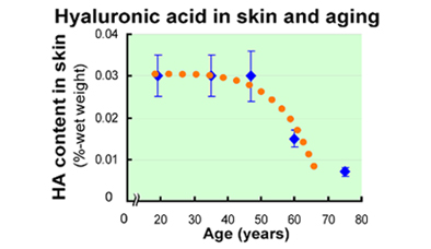 hyaluronic acid, before and after